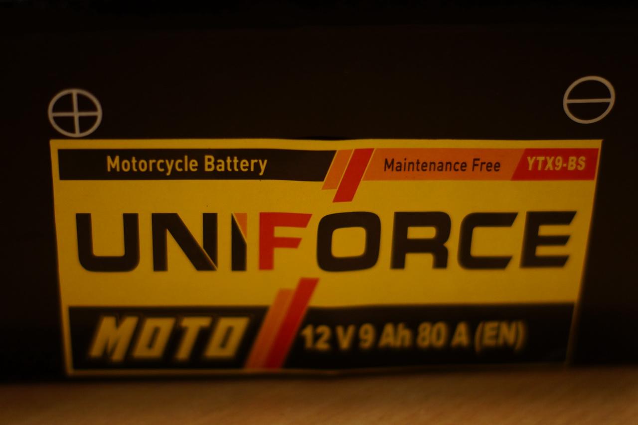 Сама аккмуляторная батарея.